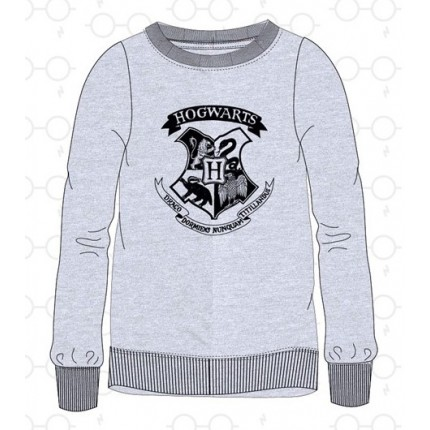 Sudadera Harry Potter junior Hogwarts