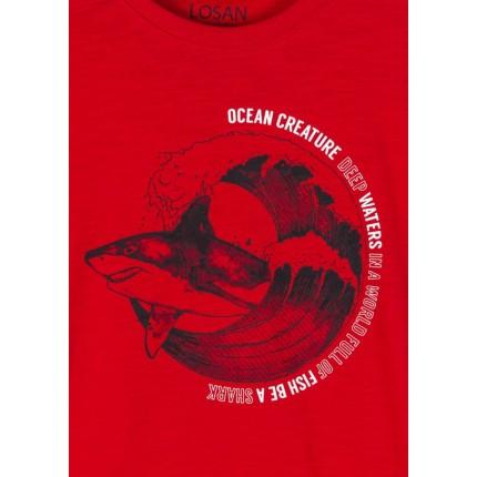 Detalle estampado de Camiseta Losan niño junior Shark manga corta